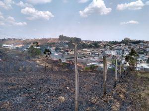 Incêndio em vegetação ameaçou Ceasa e Casa de Festas