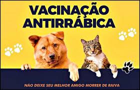 Campanha de Vacinação Antirrábica  tem seu prazo prorrogado